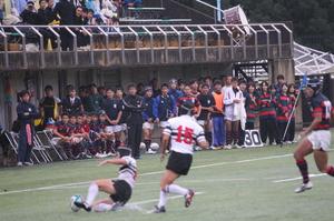2011.11.6-2-1.JPG